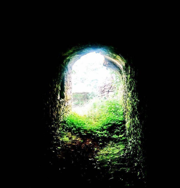 Palamu fort Latehar #incredibleindia