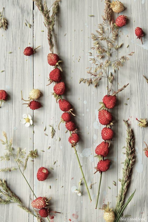 A guide to celebrating Midsummer, Swedish style - wild strawberries threaded on straw.