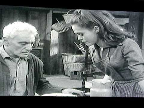 Belle et Sébastien : feuilleton télévisé français en 13 épisodes de 26 minutes, en noir et blanc, écrit et réalisé par Cécile Aubry et diffusé à partir du 26 septembre 1965 sur la première chaîne de l'ORTF. (source http://fr.wikipedia.org/wiki/Belle_et_S%C3%A9bastien