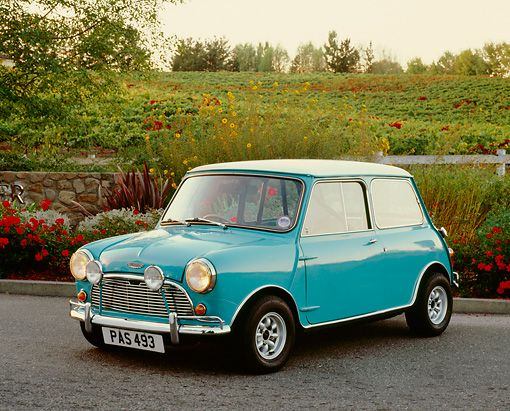 Light blue mini