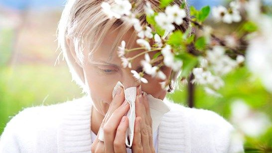 Dangers of Allergy Meds for Your Heart