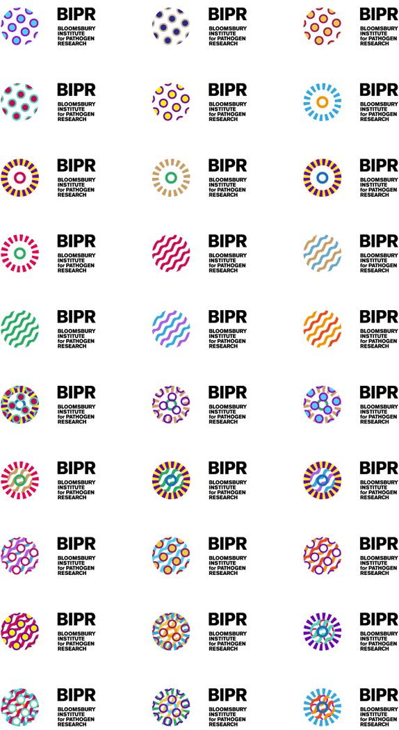 The logo combines three figurative representations — a microscopic view of a parasite, a genome map of a bacterium, and a rendering of a virus (...) Appearing in numerous forms and colours, the ever-changing logo relates to the nature of BIPR's work.