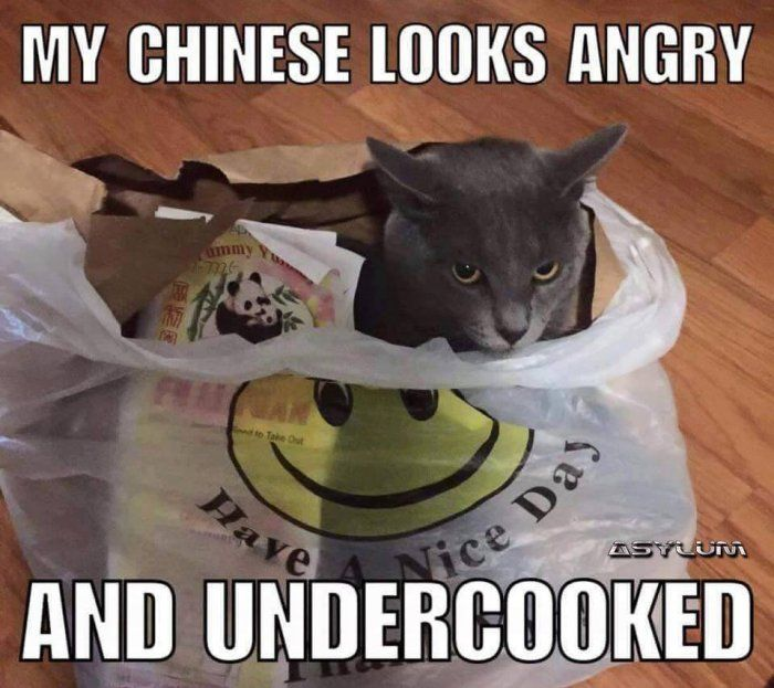My chinese looks angry - racist meme - http://jokideo.com/my-chinese-looks-angry-racist-meme/