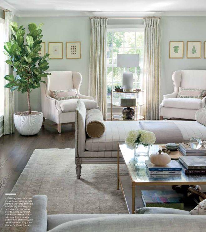 Narrow Living Room Solutions: Long Narrow Living Room With No Foyer