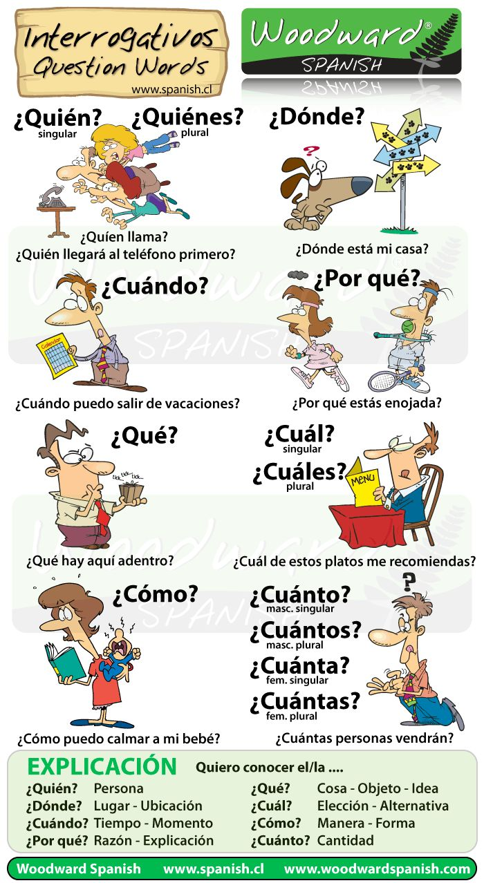 We have just created another one of our cartoon charts, this time about Question Words in Spanish (called Interrogativos). The words we have included are: Quién, Quiénes Dónde, Cuándo, Por qué, Qué...