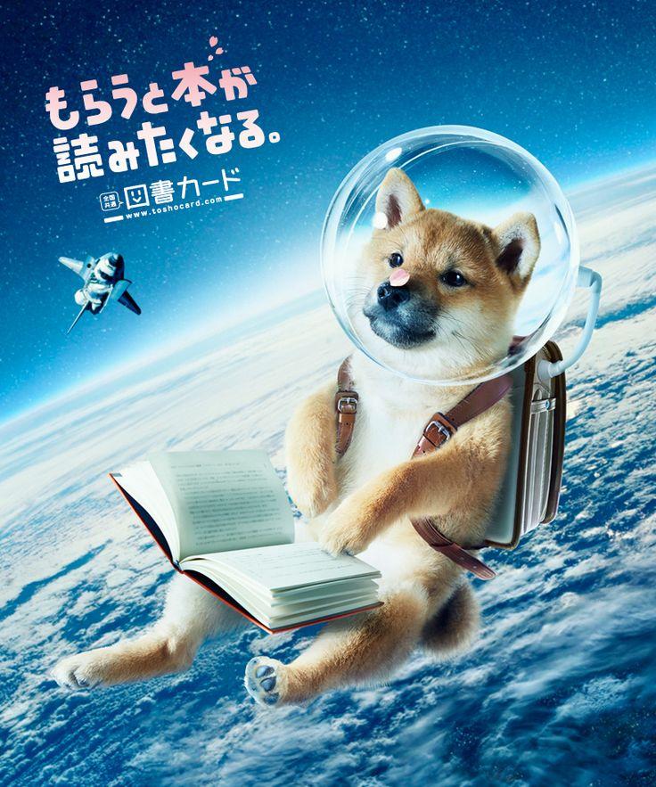 2014 spring/図書カード/poster