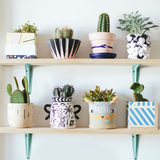 Looking for a hip and modern way to decorate your indoors? These unique succulent looks will be sure to add a little something extra to every room! Fit them in any small or large space in your home.
