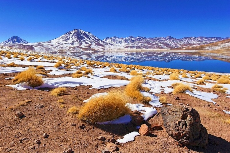 Miscanti Lake Región de Antofagasta