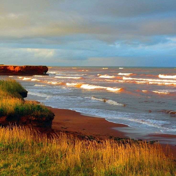 Prince Edward Islands - Beautiful