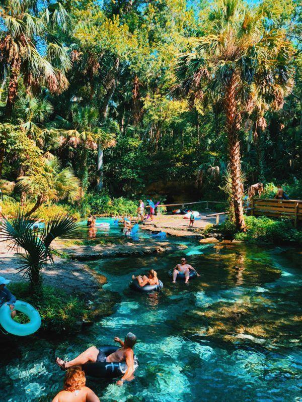 Rock Springs im Kelly Park, Zentralfloridas beste natürliche Quelle Dieser Beitrag …