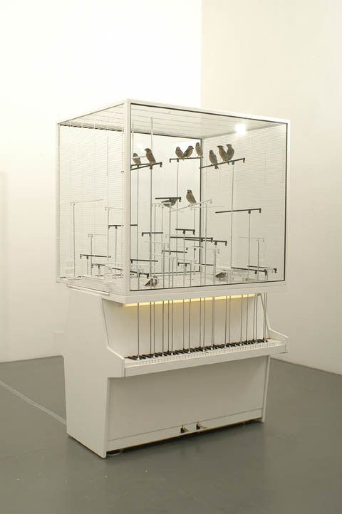 Robert Gligorov - Dolar Note ,Bird cage with real birds and 2 real vertical pianos – when birds jump on the aluminium straw they play piano notes.