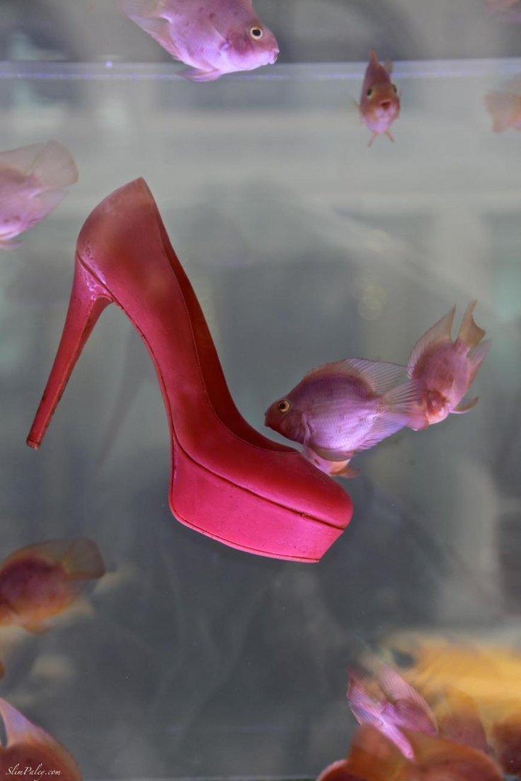 Swimming with the Louboutins, Barney's window, NYC