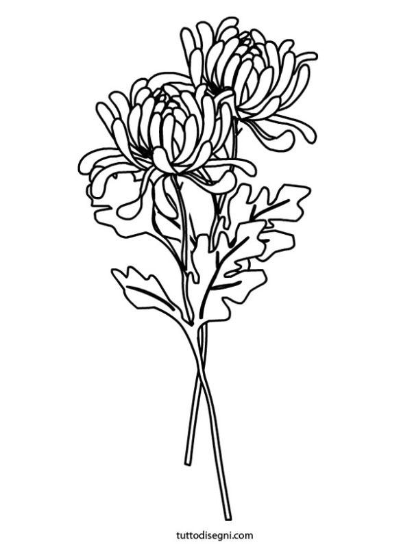 chrysanthemums coloring page - Chrysanthemum Book Coloring Pages