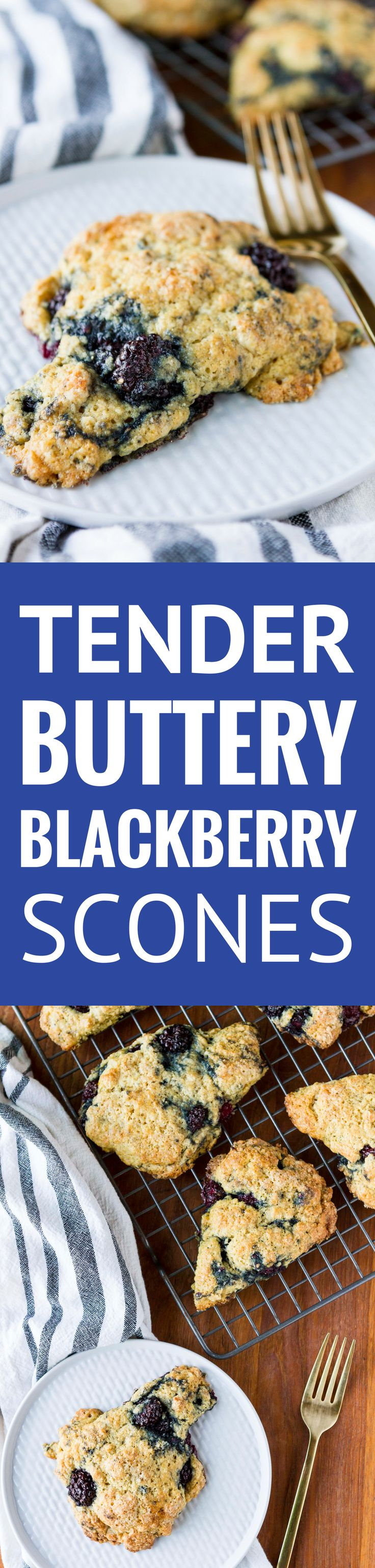 Tender & Buttery Blackberry Scones (ad) -- These tender, buttery blackberry scones are so simple to make, even my kids can bake them all by themselves... Substitute your favorite fresh or frozen berries to customize! | blackberry scones recipe | easy blackberry scones | best blackberry scones | simple blackberry scones | buttermilk blackberry scones | find the recipe on unsophisticook.com #blackberry #scones #sconerecipe #cookingwithkids #CountOnCor #OvenTimeTips