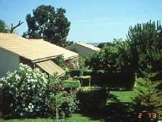 Location appartement Calvi Haute Corse pour 4 personnes (!!!! Piscine chauffée + Prix ok + du dimanche au dimanche)