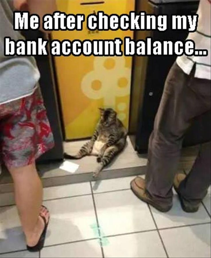Funny Pictures Of The Day - 34 Pics