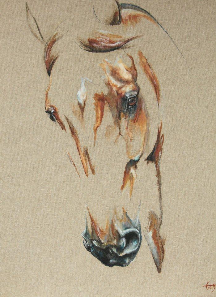 1000 id es sur le th me dessin cheval sur pinterest for Peinture sur fer a cheval