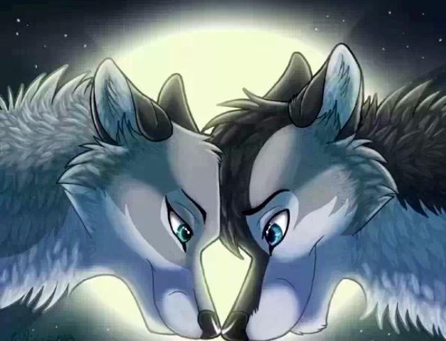 138 best images about anime wolf on pinterest wolves a - Anime wolves in love ...