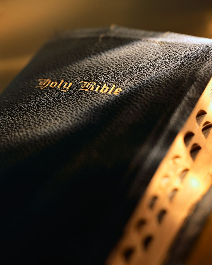 THE BIBLEHoly Bible, Worth Reading, Inspiration, Life, Book Worth, Words Of God, Favorite Book, The Bible, True Stories