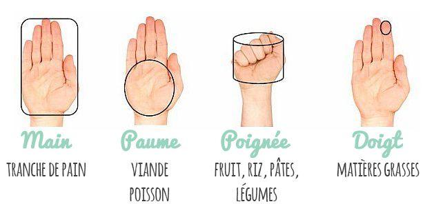 QUELLES LES BONNES PORTIONS LORS D'UN REPAS ? #regimeuse #bienetre #conseil #repas #portions #quantité #mangersain #alimentation #sport #mincir #tbc #weightwatchers #fitfrenchies