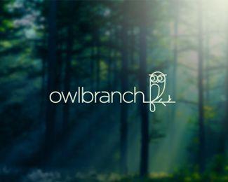 OwlBranch Logo Design