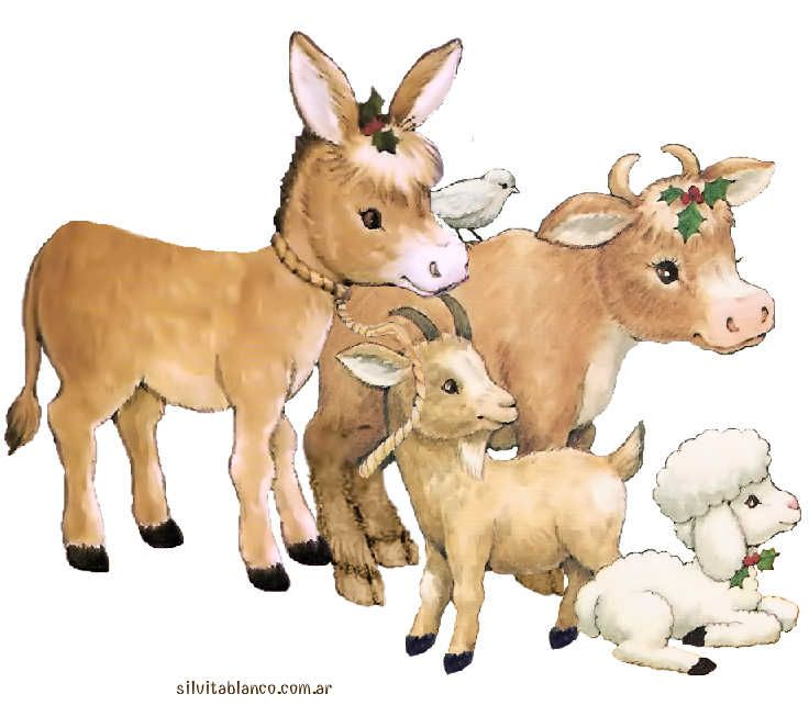 burro, vaca,asno oveja