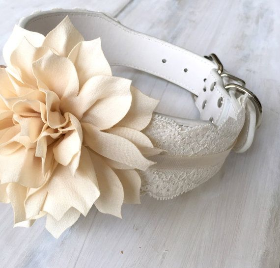 Wedding Dog Collar with Ivory Flower and Lace Medium Large White Leather Pet Collar Flower Set Dog Wedding Outfit
