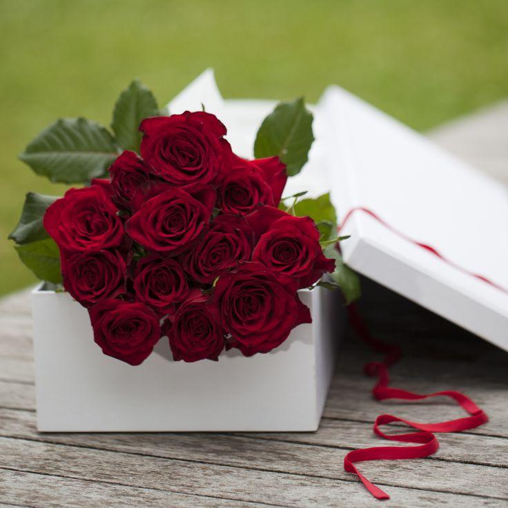 Dozen of roses in a box