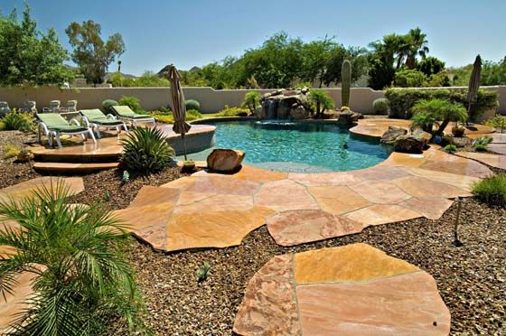 17 best images about a desert landscaping for pool on for Garden pool in arizona