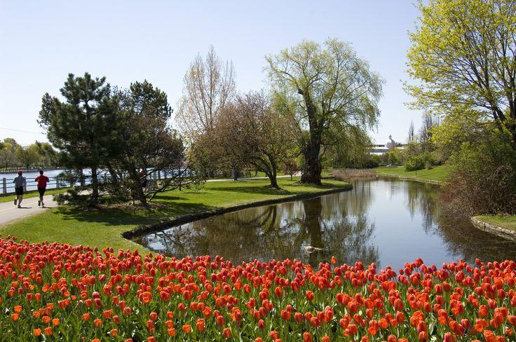 Along the Rideau Canal, Photo Credit: Ottawa Tourism