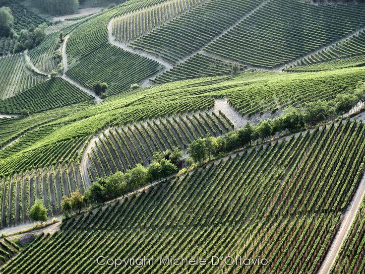 Langhe, Piemonte, Italia