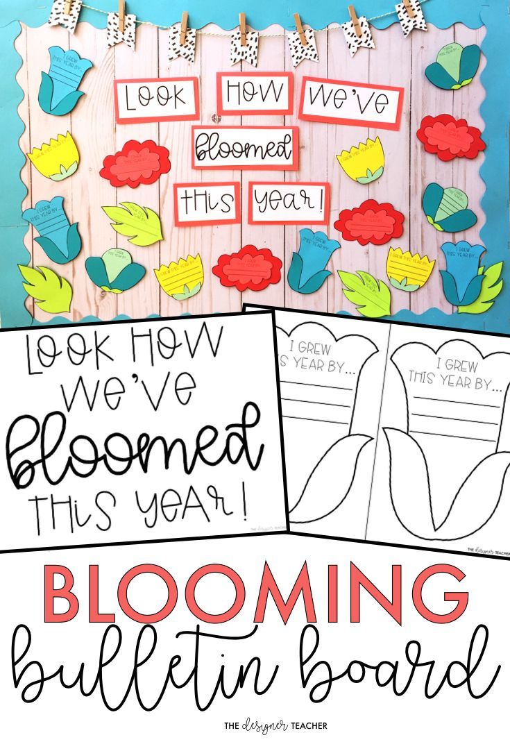 This beautiful bulletin board kit is perfect for the month of May or the end of the school year. Students reflect on how they've grown this school year while creating a spring flower. Craftivity and no prep versions included. #bulletinboard #classroom