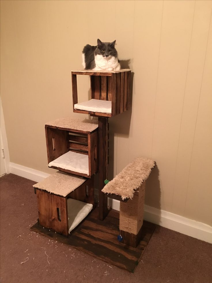 Diy Cat Tree With Litter Box