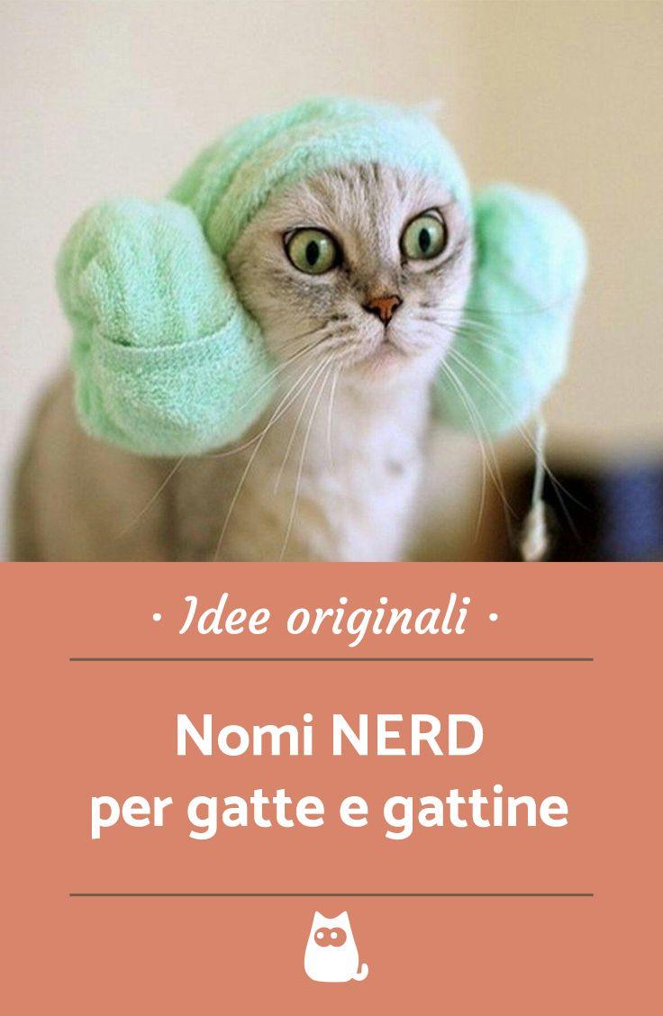 Nomi Nerd Per Gatti Nomi Originali Per Animali Cats Star Wars E