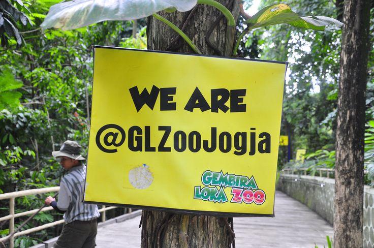 We are @GLZoo Jogja