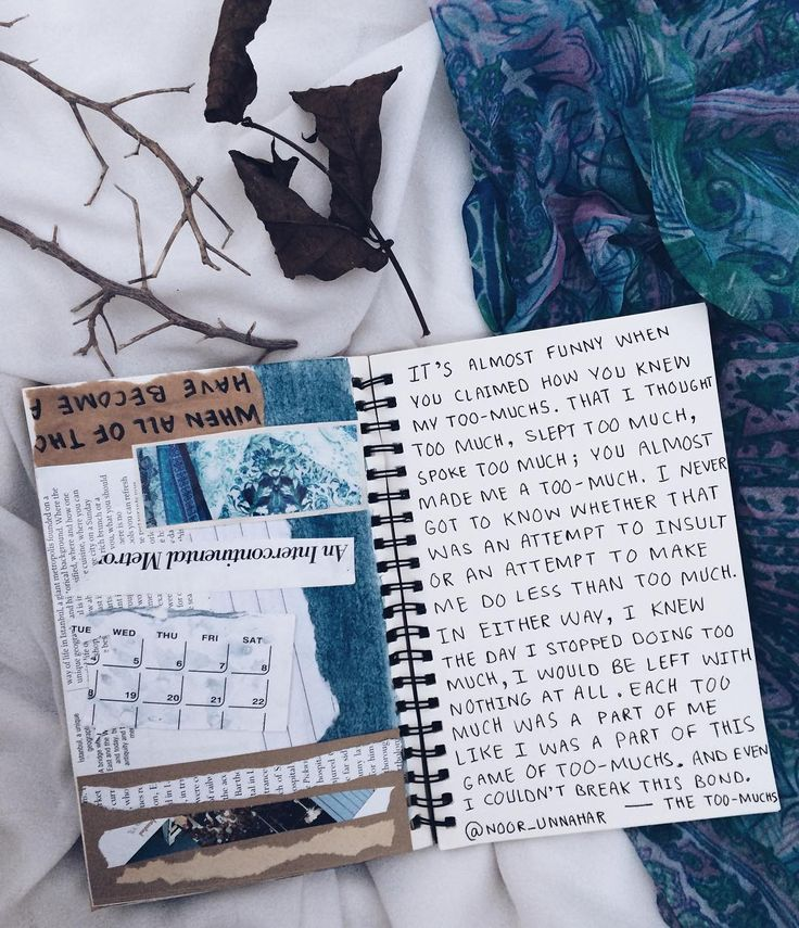How do I customize a Journal Entry with a Skin?