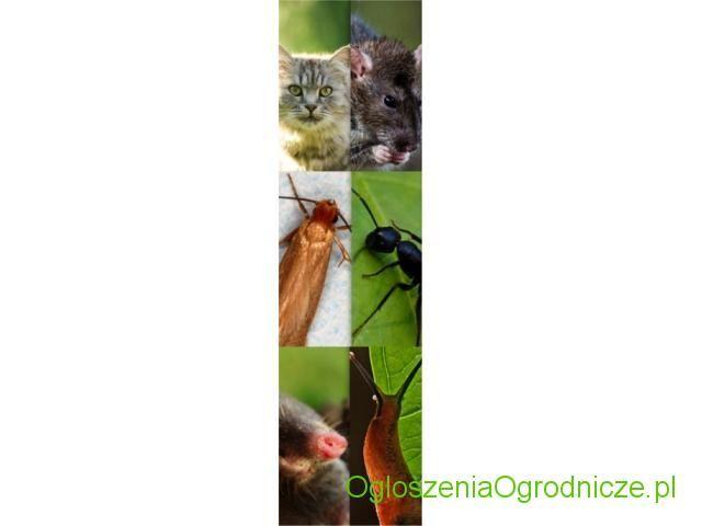 Odstraszacze zwierząt, odstraszacz mrówek, pająków, szczurów, myszy, kun, lisów, dzików