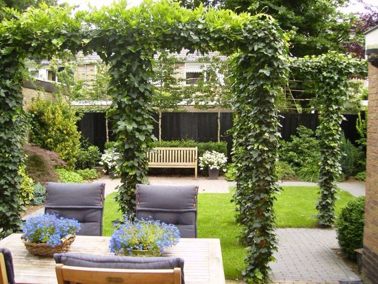 203 best images about tuininspiratie on pinterest gardens hedges and outdoor living - Dakbedekking voor pergola ...
