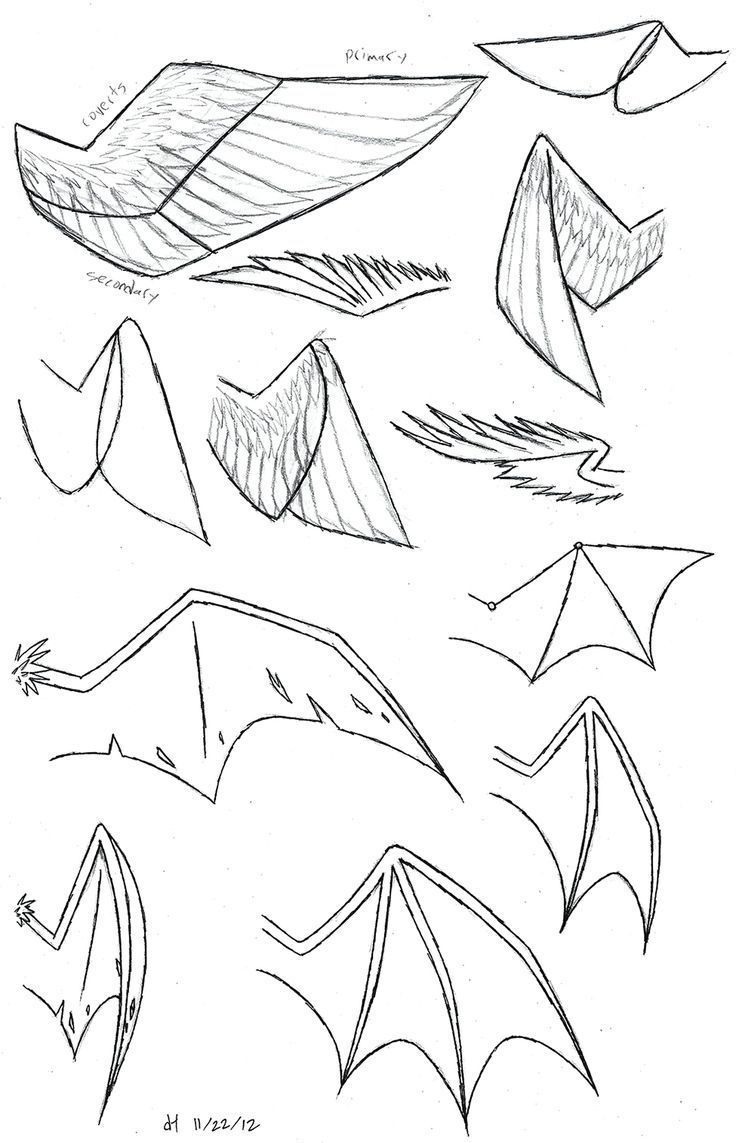 How To Draw Dragon Ears Google Search Anime In 2020 Dragon Drawing Design Reference Wings Drawing