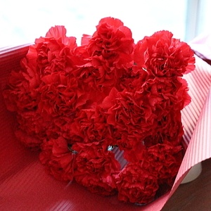 carnation bouquet for mother's day 母の日期間限定 カーネーションのブーケ