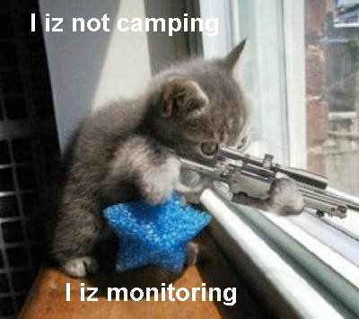 Call Of Duty I am not Camping cat Funny Pic