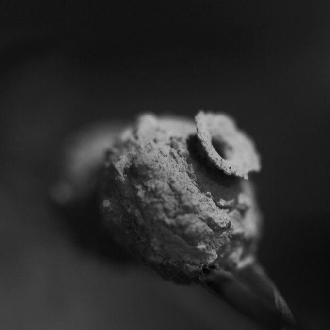 "Photo ""Wasp'snest"" by VanessaLim"