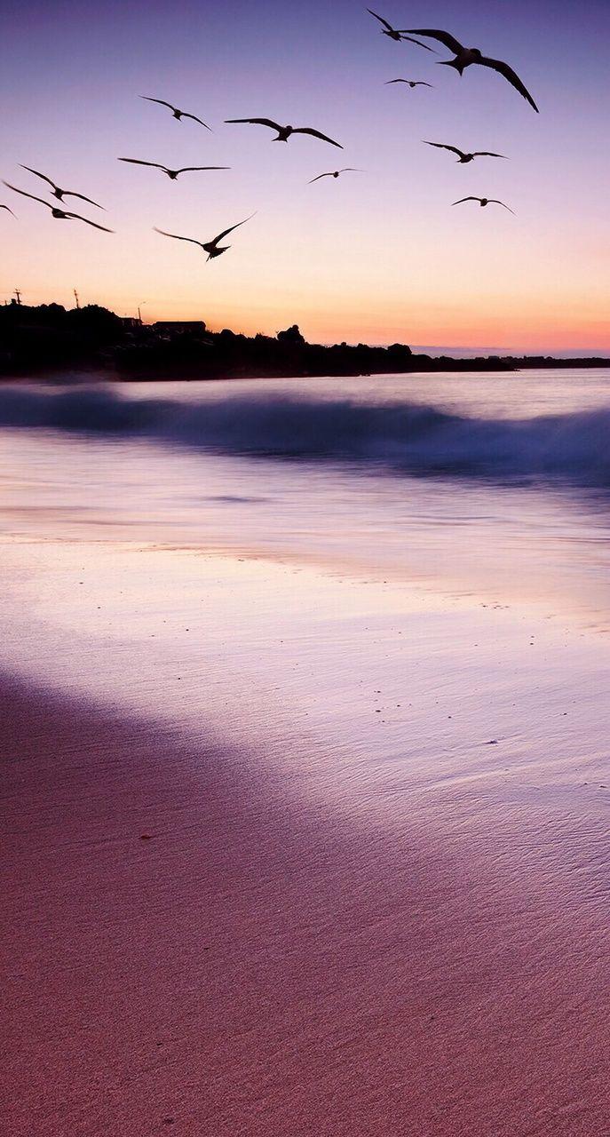 Iphone wallpaper tumblr ocean - Ocean And Beach Tumblr Blog Ocean And Beach Posts
