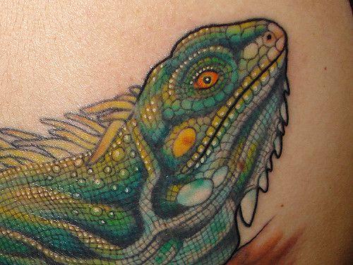 Iguana tattoo | Tattoo | Iguana tattoo, Tattoos, Reptiles
