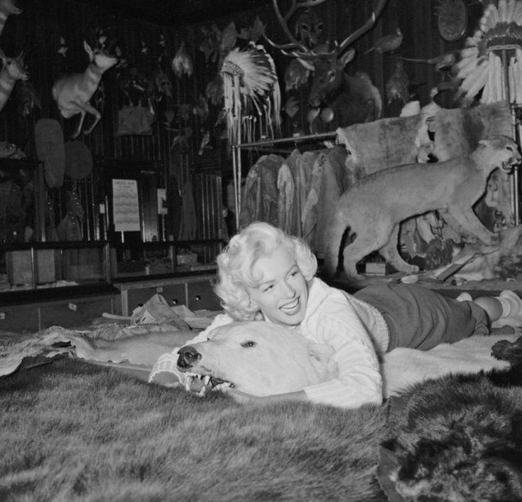 """Marilyn Monroe au Canada, pour les extérieurs du film """"River of no return"""".1953 by John VACHON"""