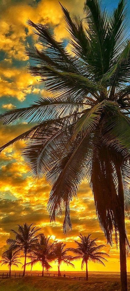 Atalaia Beach, Sergipe, Brazil