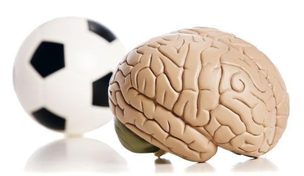 Les enfants actifs ont un cerveau musclé | WIXXMAG
