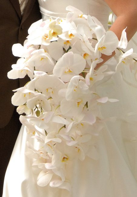 Cascading white orchid bouquet | In Focus Photography | See more of this green floral wedding - http://www.todaysbride.ca/articles/carmelo-kerri-cianciotta