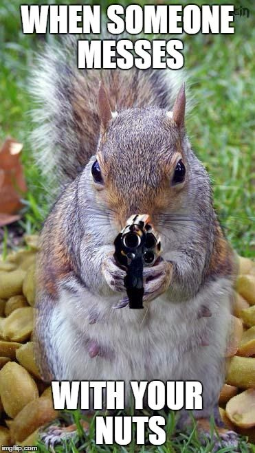 When someone messes with your nuts | WHEN SOMEONE MESSES WITH YOUR NUTS | image tagged in funny squirrels with guns 5,funny,funny memes,funny meme,too funny,nuts | made w/ Imgflip meme maker