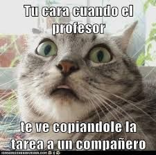 videoswatsapp.com imagenes chistosas videos graciosos memes risas gifs chistes divertidas humor http://ift.tt/2j4Rcqz